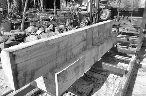 Skulpturen-Holzzuschnitt-2-sw