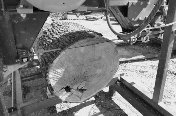 Skulpturen-Holzzuschnitt-4-sw